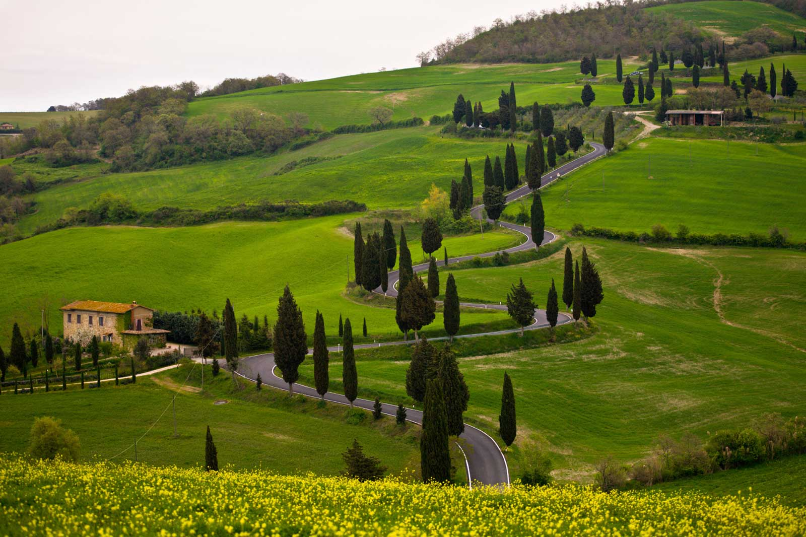 Tuscan Wine Tours Private